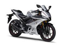 Yamaha R25 silver