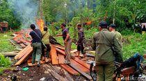 BBKSDA Bakar Pondok Persembunyian Pembalak Liar di Riau
