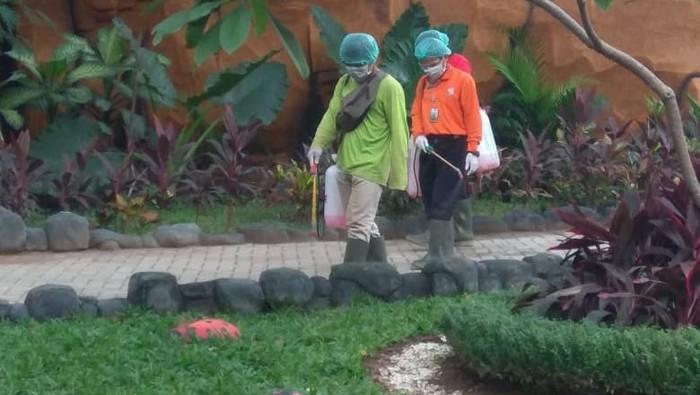 Kebun Binatang Surabaya Tutup Jam Berapa