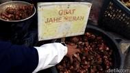 Petani Milenial Jabar Garap Sereh Wangi dan Jahe Merah