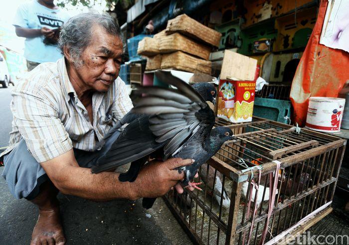 Seorang pedagang burung tampak beraktivitas di kawasan Pasar Burung yang berada di Jalan Pramuka, Jakarta, Selasa (17/3/2020).