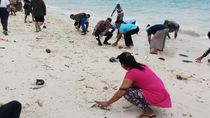 Heboh Fenomena Ikan Hidup Terdampar di Pantai Maluku, Ini Penjelasan KKP