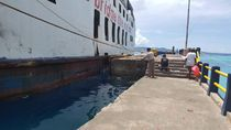 KKP Sebut Fenomena Ikan Terdampar di Maluku Bukan Akibat Bencana Alam