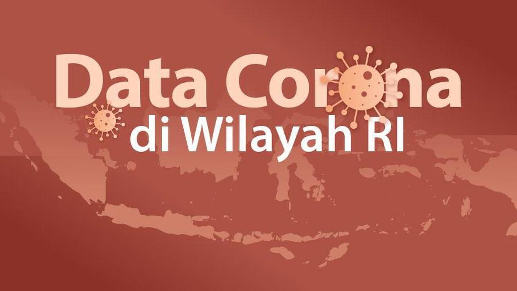 Ini Daftar 31 Daerah Zona Merah dan 102 Zona Hijau Corona di Indonesia