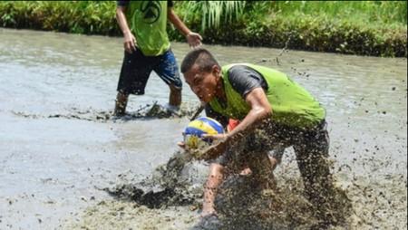 Polo lumpur