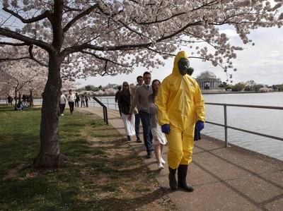 Potret Antusiasme Warga Washington Saksikan Sakura Mekar di Tengah Corona