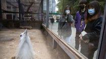 Warga China Mulai Banjiri Tempat Wisata