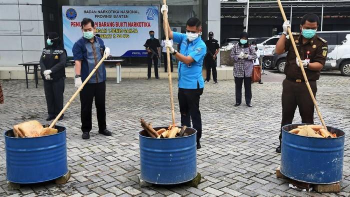 Petugas BNN (Badan Narkotika Nasional) Provinsi Banten bersama jajaran Muspida menyulut puluhan paket ganja saat Pemusnahan 50 Kilogram Ganja di Kantor BNN Provinsi Banten, di Serang, Kamis (26/3/2020). Petugas BNNP Banten menangkap kedua kurir saat akan mengambil kiriman paket 50 kilogram ganja dari Aceh yang disamarkan dalam empat keranjang asem jawa di Kantor jasa pengiriman yang setelah diusut ternyata ganja tersebut milik MF dan ND, dua warga binaan Lembaga Pemasyarakatan di Banten. ANTARA FOTO/Asep Fathulrahman/hp.