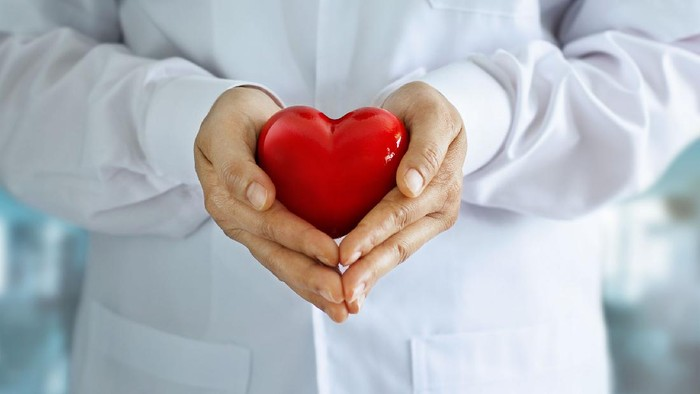 Doctor with stethoscope and red heart shape in hands on hospital backgroundn