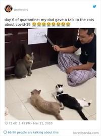 Kelakuan Kocak di Rumah Aja