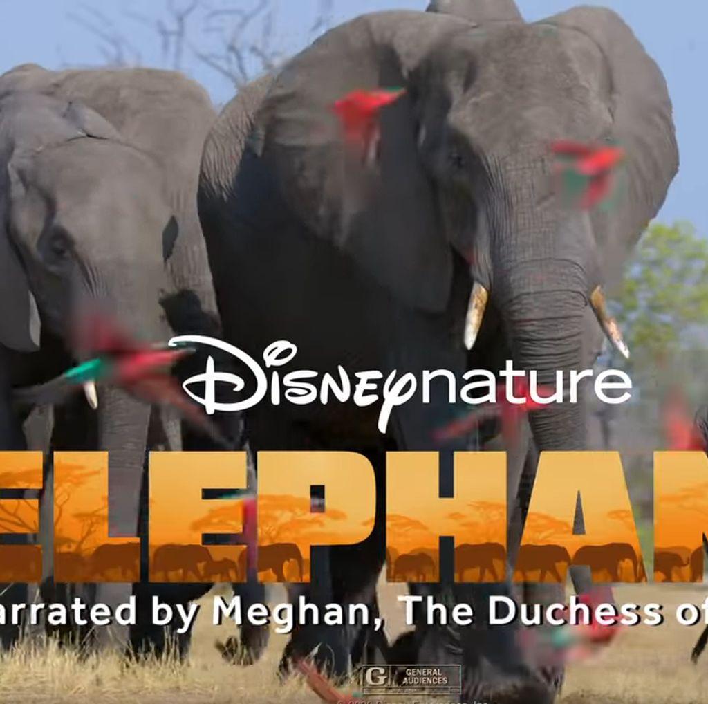 Ini Proyek Pertama Meghan Markle Jadi Pengisi Suara Disney