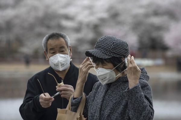 Warga China nampak mengenakan masker saat ingin melihat mekarnya bunga sakura.