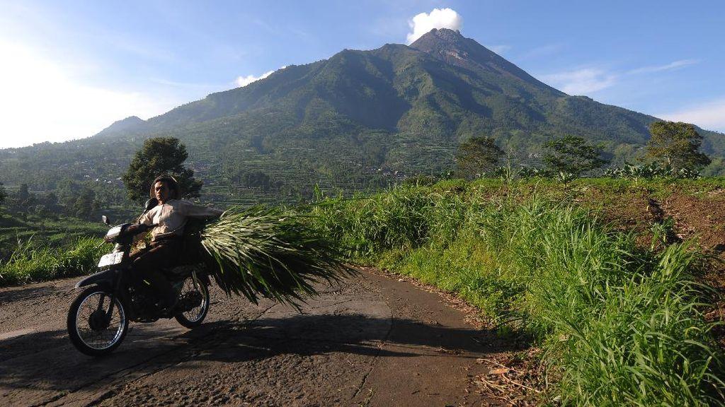 Melihat Aktivitas Gunung Merapi Hari Ini