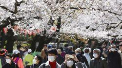 Kasus Virus Corona Meningkat, Jepang Akan Batasi Turis Asing?