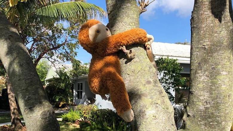 Lihat Kreatifnya Warga Sulap Perumahaan Jadi Wisata Kebun Binatang