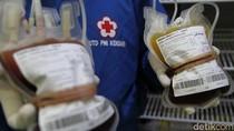 Tak Ada Donor Saat Pandemi Corona, PMI Sultra Kehabisan Stok Darah