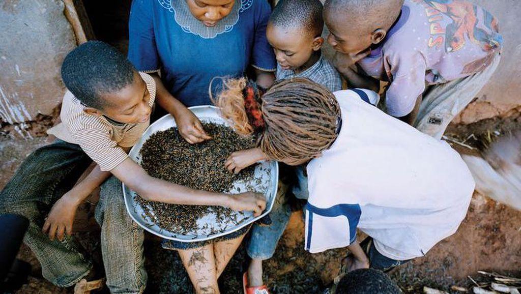5 Negara Ini Punya Olahan Serangga dan Ulat yang Enak
