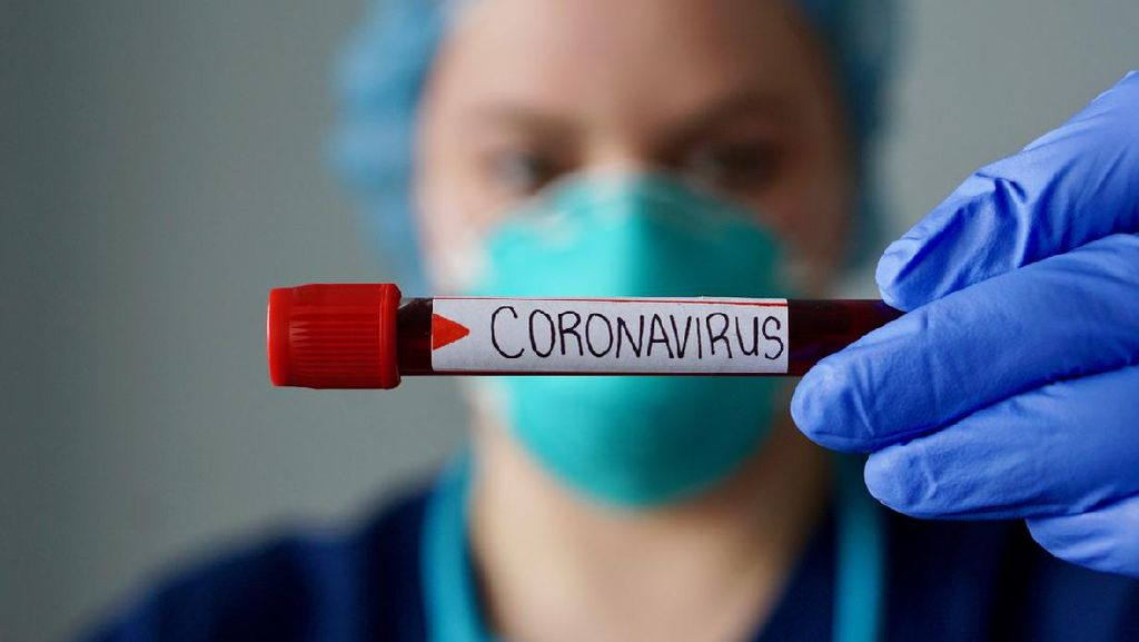 Panduan Qurban Idul Adha Saat Pandemi Corona dari MUI