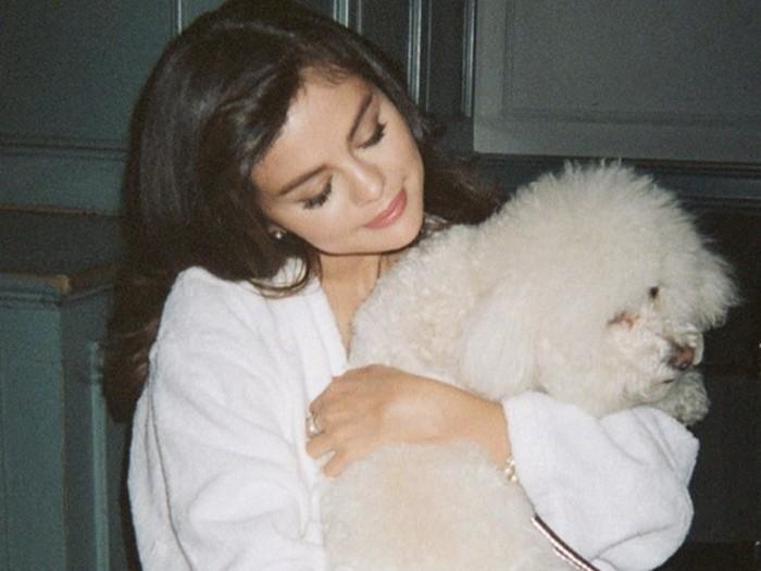 Rekomendasi lagu dan film dari Selena Gomez