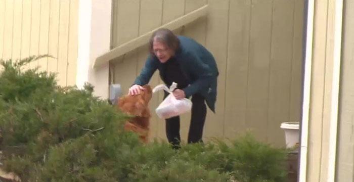 Anjing Ini Antarkan Makanan Untuk Tetangga yang Sedang Sakit