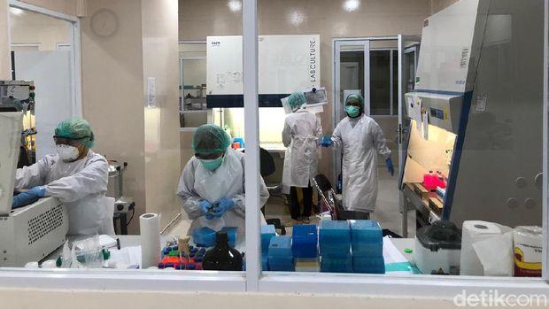 Petugas memeriksa sampel di laboratorium.