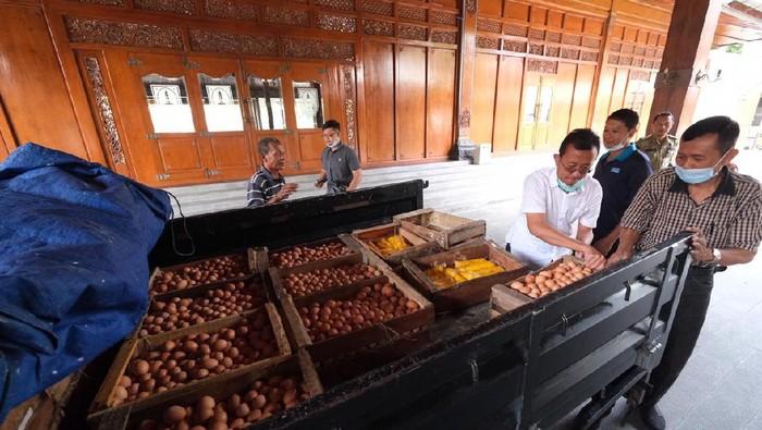Peternak bagi-bagi 2.000 telur ayam untuk warga terdampak corona di Solo