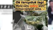 Begini Bingungnya Kaum Pria Saat Belanja Bumbu dan Sayuran di Masa Lockdown