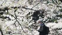 Jepang Tutup Pintu Rapat-rapat untuk Traveler