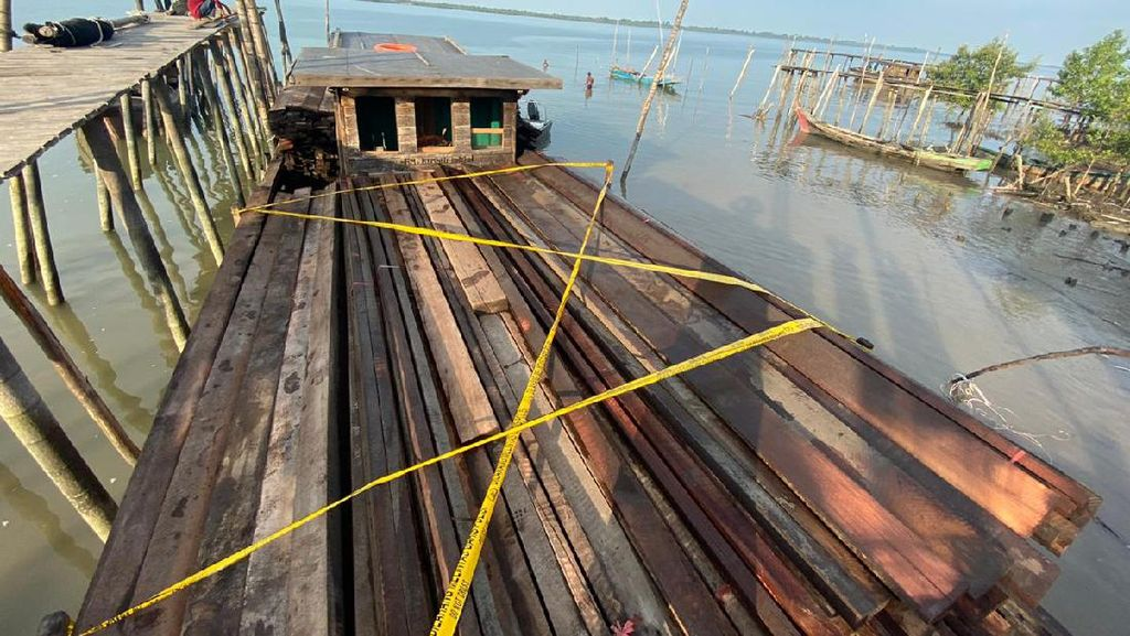Polisi Amankan Kapal Bawa Kayu Ilegal di Riau, 2 Orang Jadi Tersangka