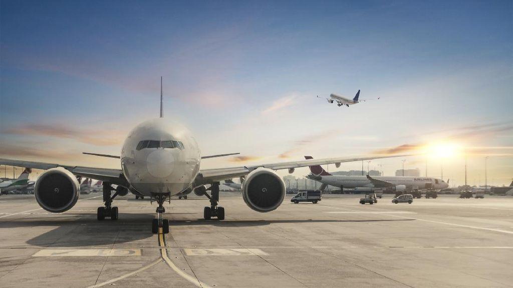 Izin Operasi Angkutan Udara Juga Dipangkas UU Cipta Kerja