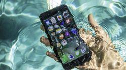 Wow! iPhone 8 Masih Berfungsi Setelah 2 Bulan Jatuh ke Sungai