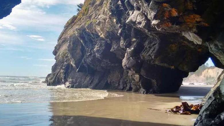 Pantai di Selandia Baru.