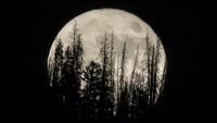 Penampakan Bulan Raksasa dari Berbagai Negara yang Memukau Mata
