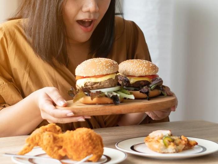 Ilustrasi Burger