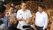 Di Tengah Corona, Ekspor Kelapa Parut Sumut ke China Capai 75 Ton