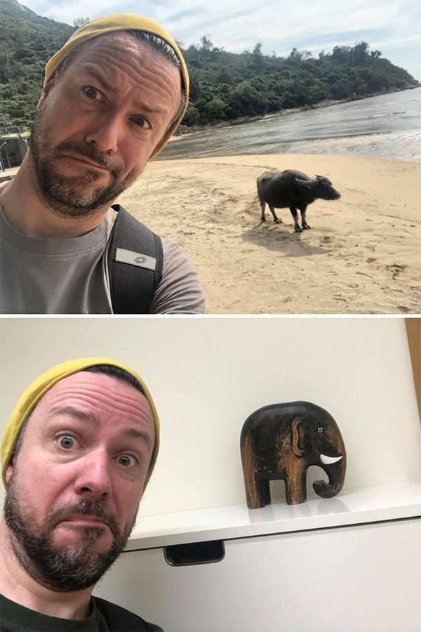 Liburan yang lalu pria ini berfoto dengan kerbau, sekarang hanya bisa berfoto dengan patung gajah.