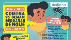 Gejala Virus Corona Vs Demam Berdarah Dengue, Kenali Bedanya
