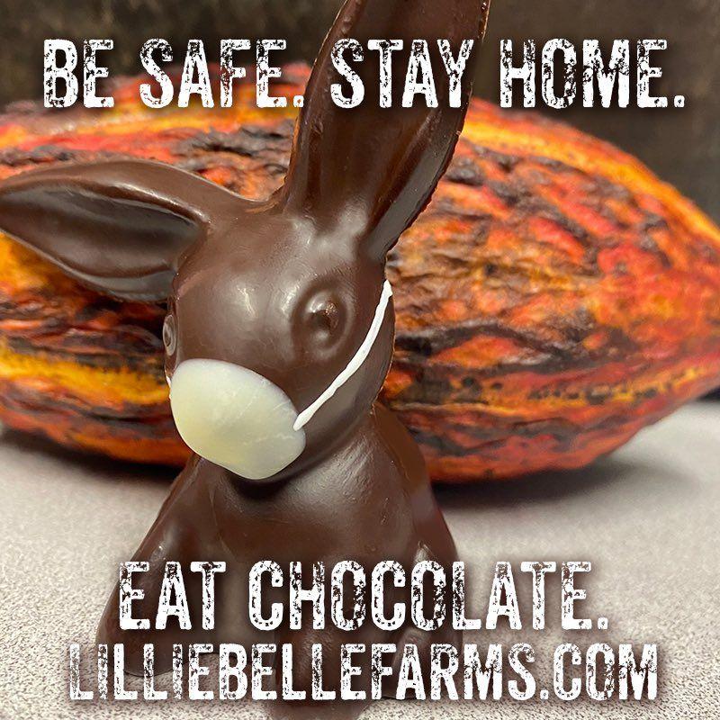 Kelinci Paskah cokelat
