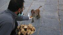 Satwa di Nepal Kelaparan, Orang-orang Ini Datang Menyelamatkan