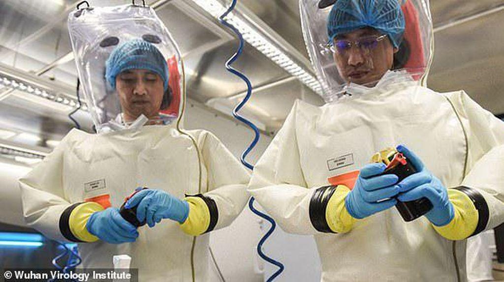 Mungkinkah Virus Corona Diciptakan Manusia?