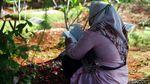 Warga Ziarah Jelang Ramadhan