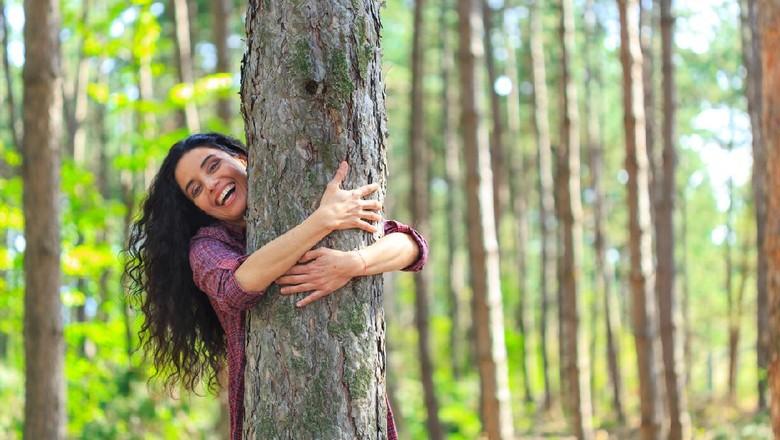 Gadis memeluk pohon besar di sebuah hutan.