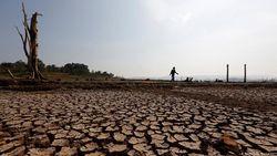Bencana Berganda Menanti Negara Asia di Tengah Wabah Corona