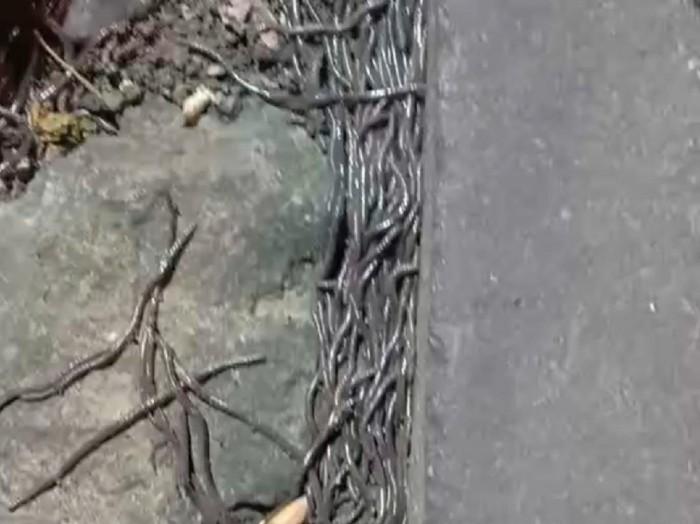 Ratusan cacing tanah tetiba muncul di Pasar Gede Solo
