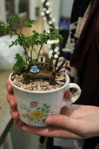 Saat karantina di rumah akibat pandemi COVID-19, sejumlah warga membuat miniatur taman yang cantik di atas sebuah cangkir teh untuk menghabiskan waktunya.