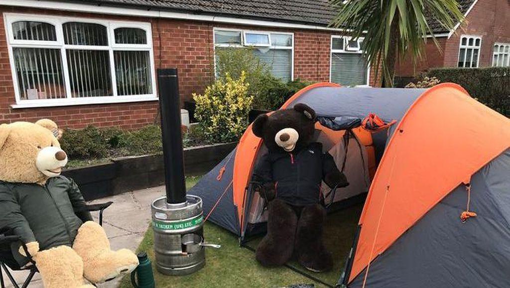Tingkah Lucu Dua Beruang Raksasa Saat Karantina di Rumah