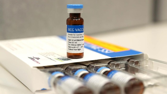 Australia mulai melakukan uji coba vaksi BCG untuk meningkatkan kekebalan terhadap virus Corona. Sebanyak 2.000 staf rumah sakit ikut ambil bagian dalam uji coba ini.