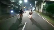 Polisi Sebut Begal yang Ditembak di Cakung Anggota Geng 2861, Apa Itu?