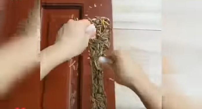 tambal pintu pakai kuaci