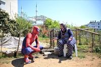 Dibagikan oleh akun Twitter Goodable, sosok Spiderman ini bernama Burak Soylu. Pemuda asal Turki itu mengenakan kostum Spiderman saat membagi-bagikan sembako kepada tetangganya. (Goodable/Twitter)
